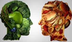 जैसा अन्न वैसा मन | जैसा-खाए-अन्न-वैसा-बने-मन-निबंध