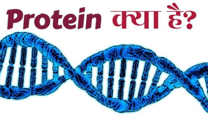 Protein Kya Hai